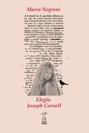 <strong>ELEGÍA JOSEPH CORNELL </strong><br/>  María Negroni